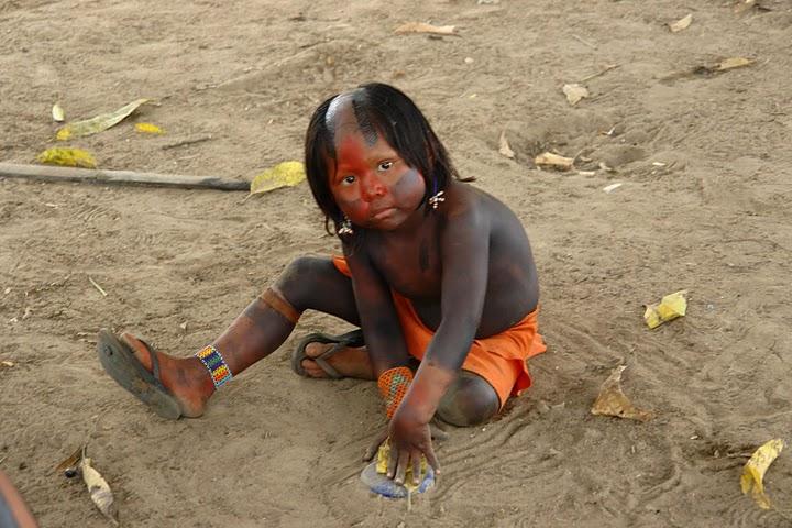 La lucha por la Amazonia