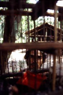 Trabajador en situación de esclavitud que fue rescatado