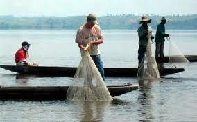 salvador pescadores artesanales