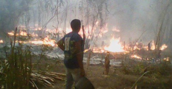 2015_09_indigenas_incendio_pom
