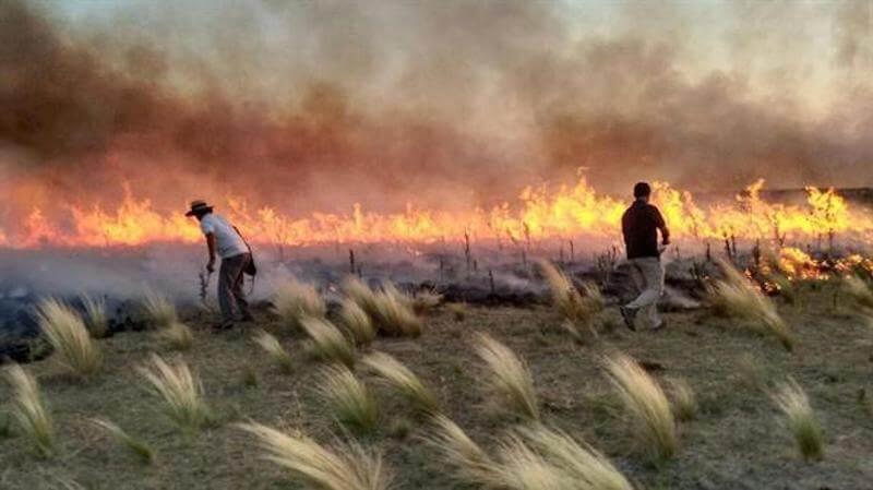 incendio-argentina-2