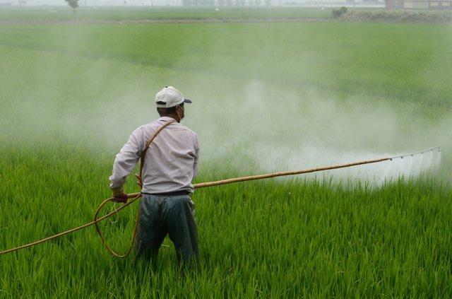 herbicide-587589_1280