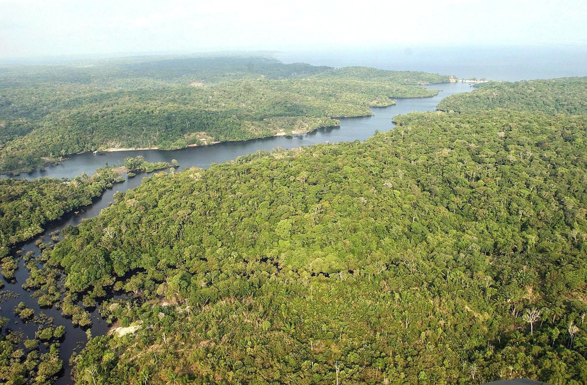 brasil amazonas
