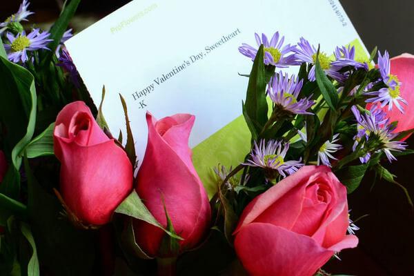 Rosas_San_Valentin_