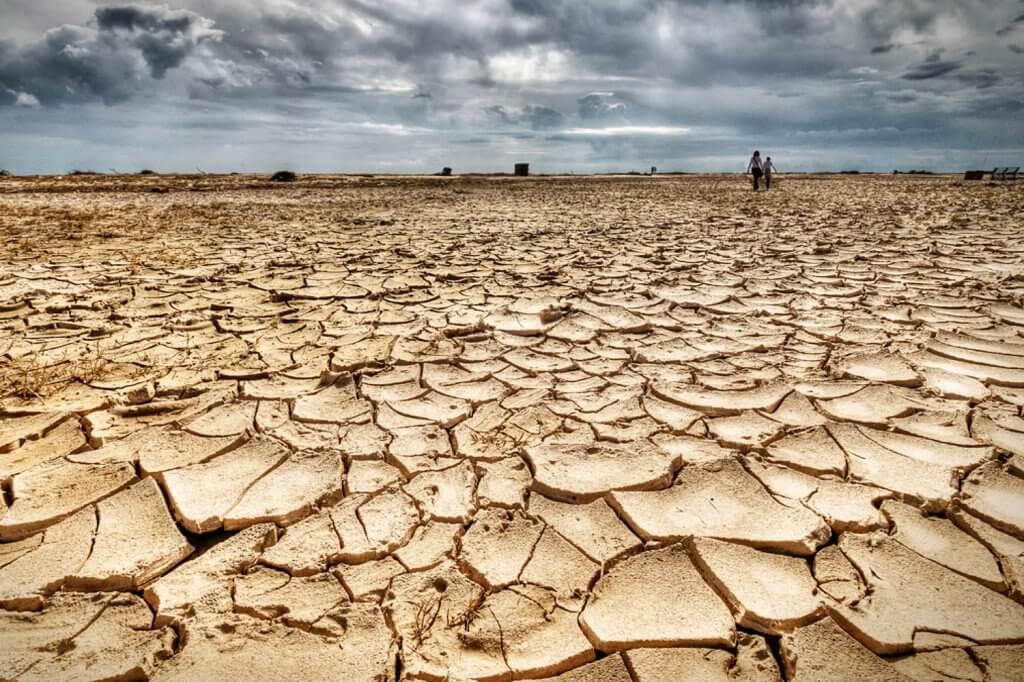 desertización-1024x682 - Desinformémonos