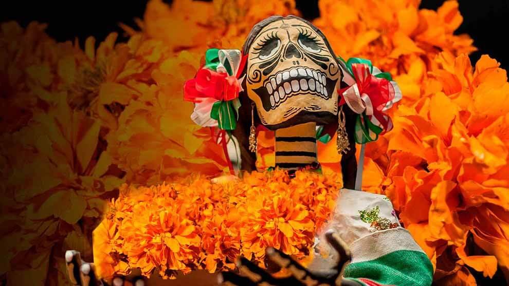 Flor de cempasúchil, ícono del día de muertos - Desinformémonos